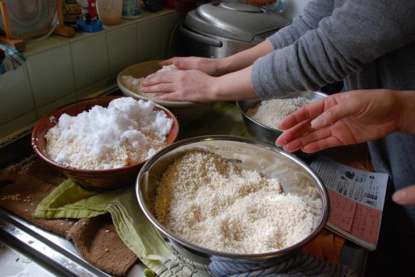 koji and salt